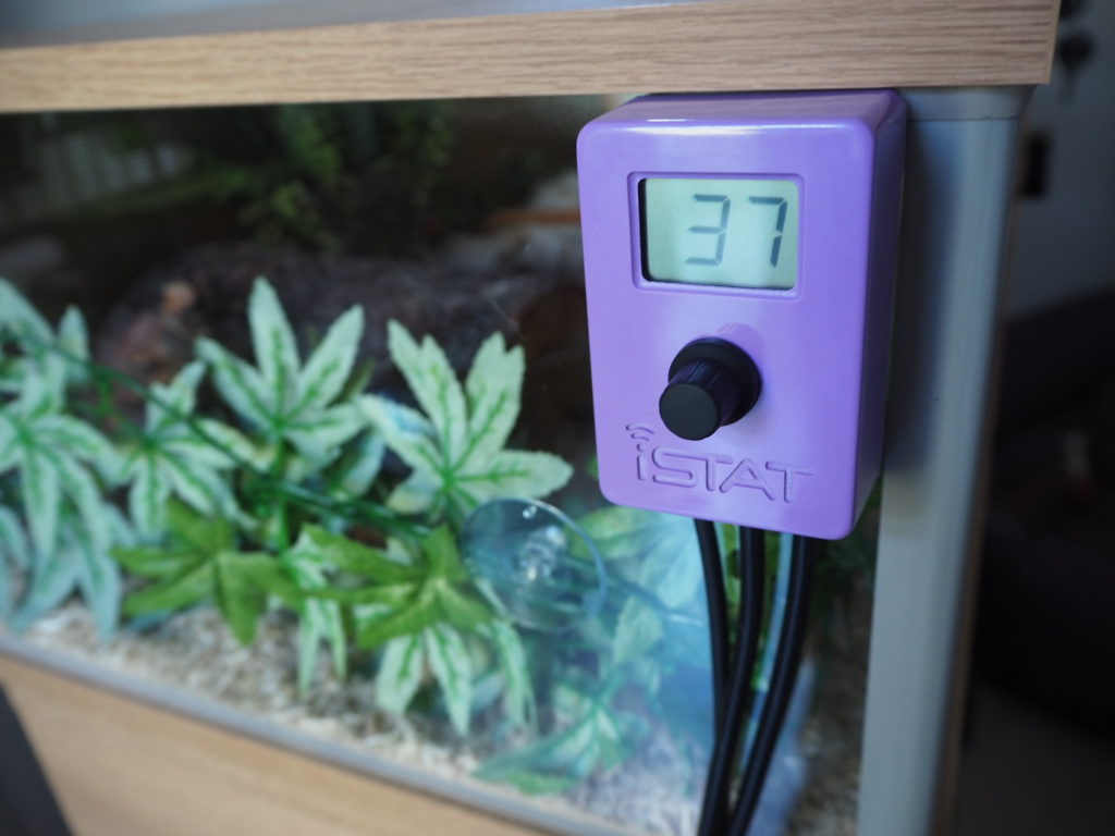 Review: iSTAT Compact reptile thermostat purple