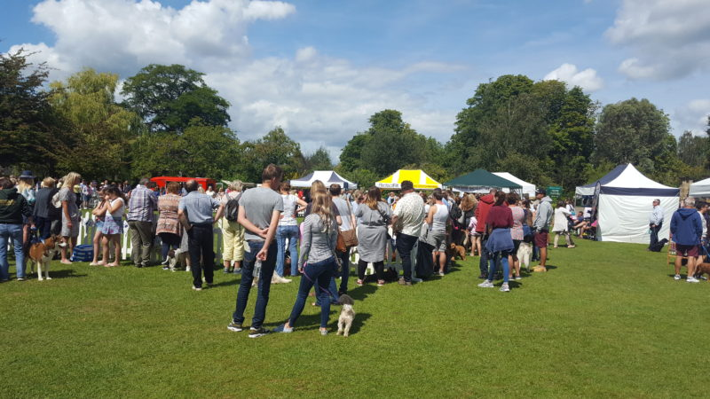 Castle Canines Hever Stalls